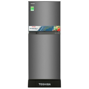 TOSHIBA GR-A25VS (DS)